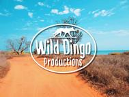 Wild Dingo Productions - Gold Coast Logo Design