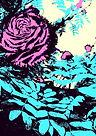 flower image for web.jpg