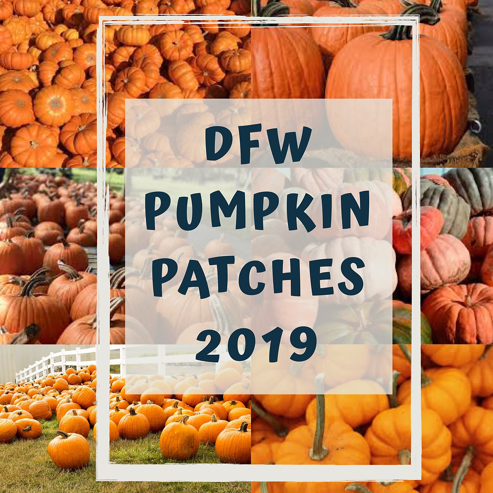 DFW Pumpkin Patches 2019