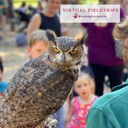 virtual fieldtrips.png