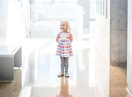Plan Your Trip: Perot Museum of Nature & Science