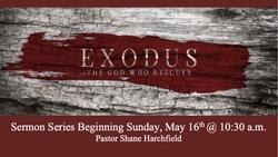 Exodus Slide