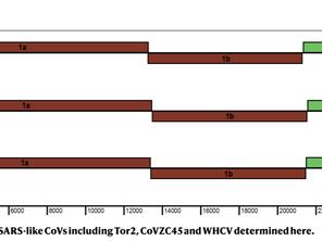 A new coronavirus associated with human respiratory disease in China.