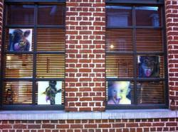 exposition 'les fenêtres'.jpg