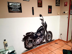 Mur Graff Moto