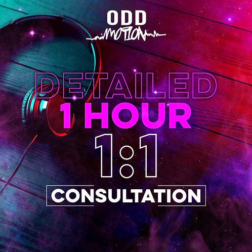 Detailed 1 hour 1:1 Consultation