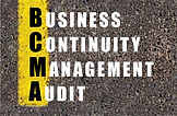BCM Internal Auditor