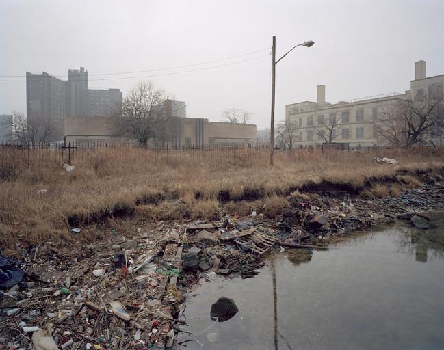 Coney Island Creek Shoreline.jpg