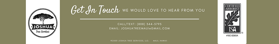 Joshua Tree Services Footer (3).png