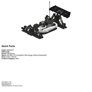 HB204672 - D819RS 1/8 Competition Nitro Buggy (Without Bodyshell)