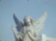 Screen Shot 2019-07-31 at 10.27_edited.p