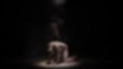 Screen Shot 2019-02-27 at 11.50.44 AM.pn
