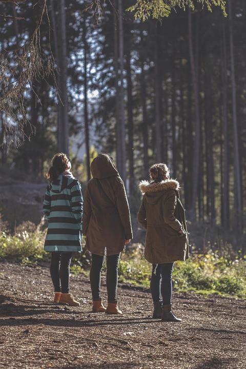 forest-1010583_960_720.jpg