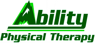 Ability logo from Nichole no background.