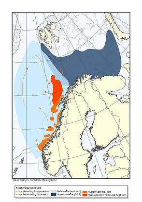 Nytt_utbredelseskart_NVG_sild.large.jpg