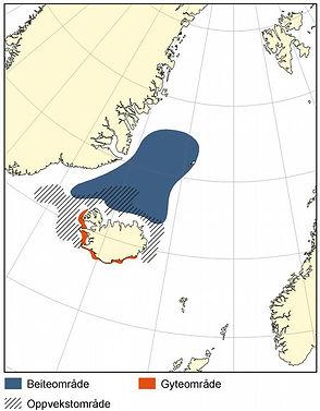 Lodde_ved_Island.large.jpg