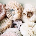Pompom-Blossom-_DS090215009136-35-150x150