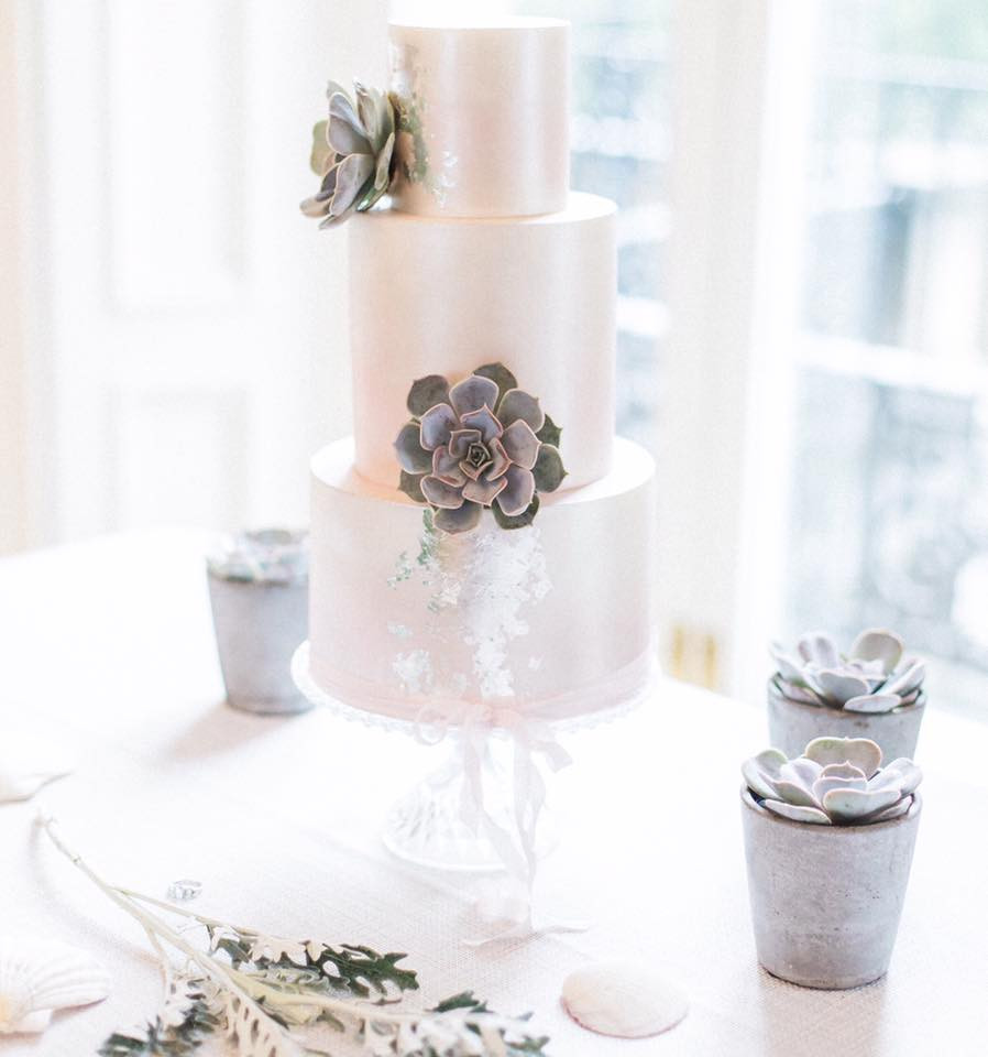 Iridescent cake with succulents by Wildflower Cakes