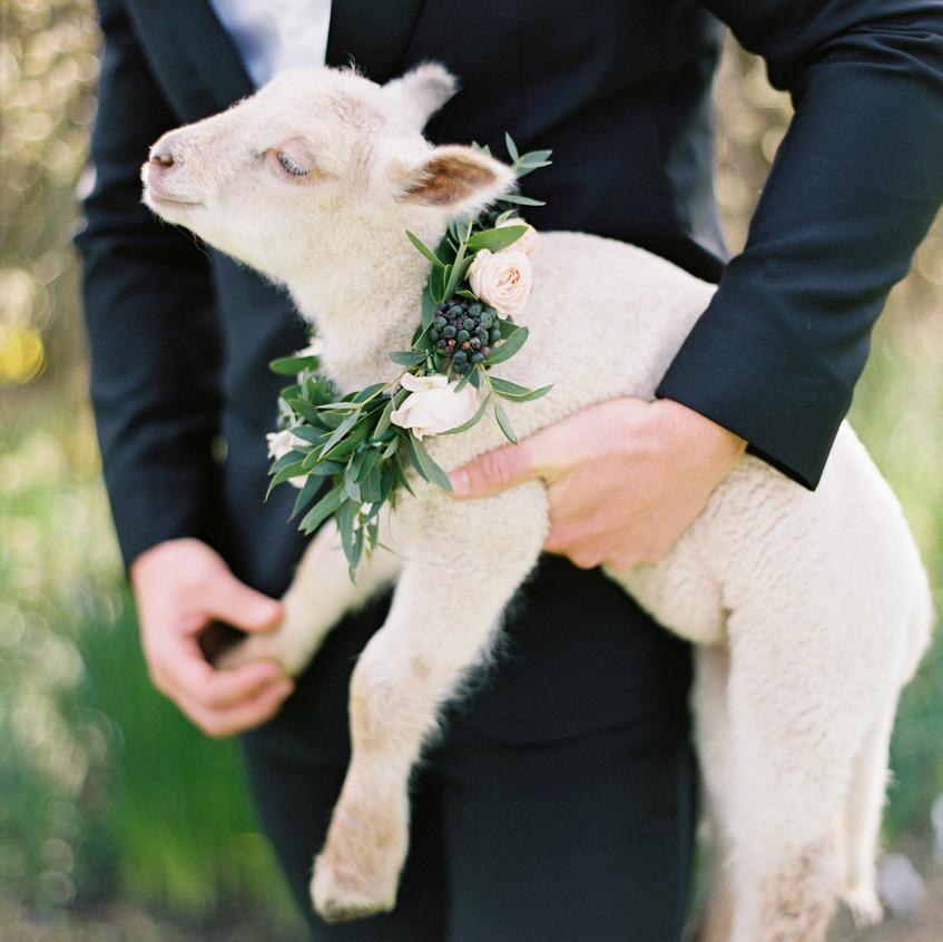 amelia_johnson_photography_for_atrendy_wedding_ireland00151