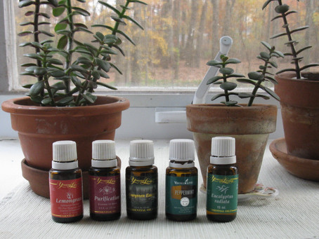 Essential Oils for Living