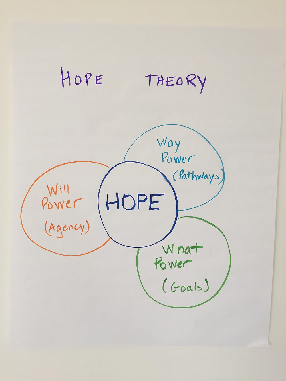 Hope Theory helps identify ways to move forward - pathways, agency and goals.