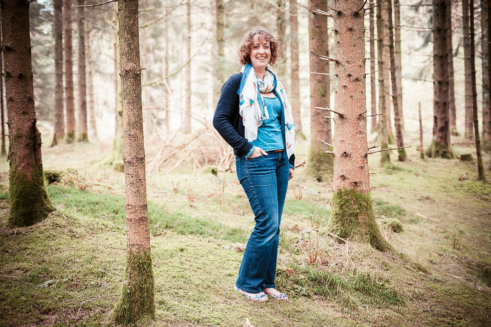 Counselling, East Devon Ecotherapy