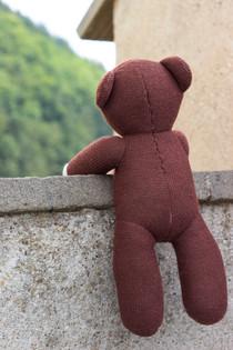 Teddy bear scouting