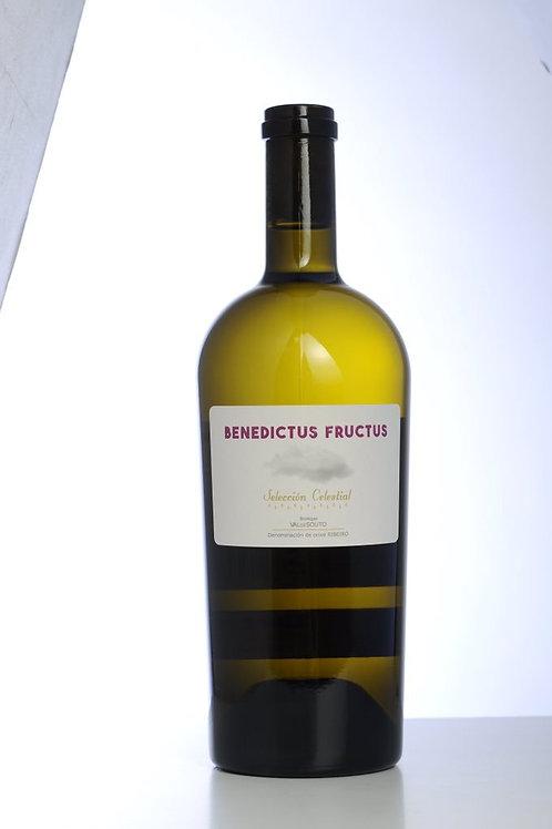 Benedictus Fructus Ribeiro