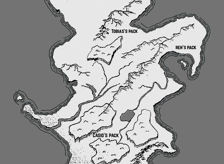 Map of the Island (Casio)