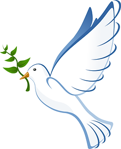 baptism-dove-png-1.png