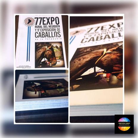 Impresión de Libros / Catálogos