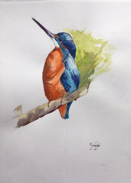 Martin pêcheur | Jozefa peintures