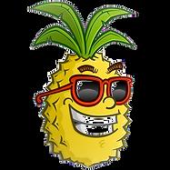 __ananas%20BD_edited.png