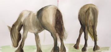Chevaux  | Jozefa peintures
