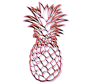 __Ananas_dessin.png