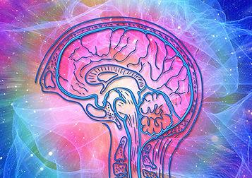 cerveau bioresonance | soin Vevey