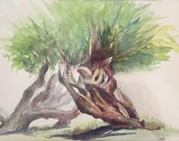 Arbre   Jozefa peintures