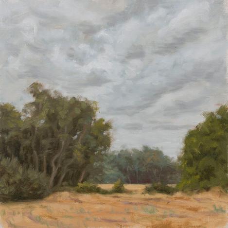 Overcast skys  near Simi Valley