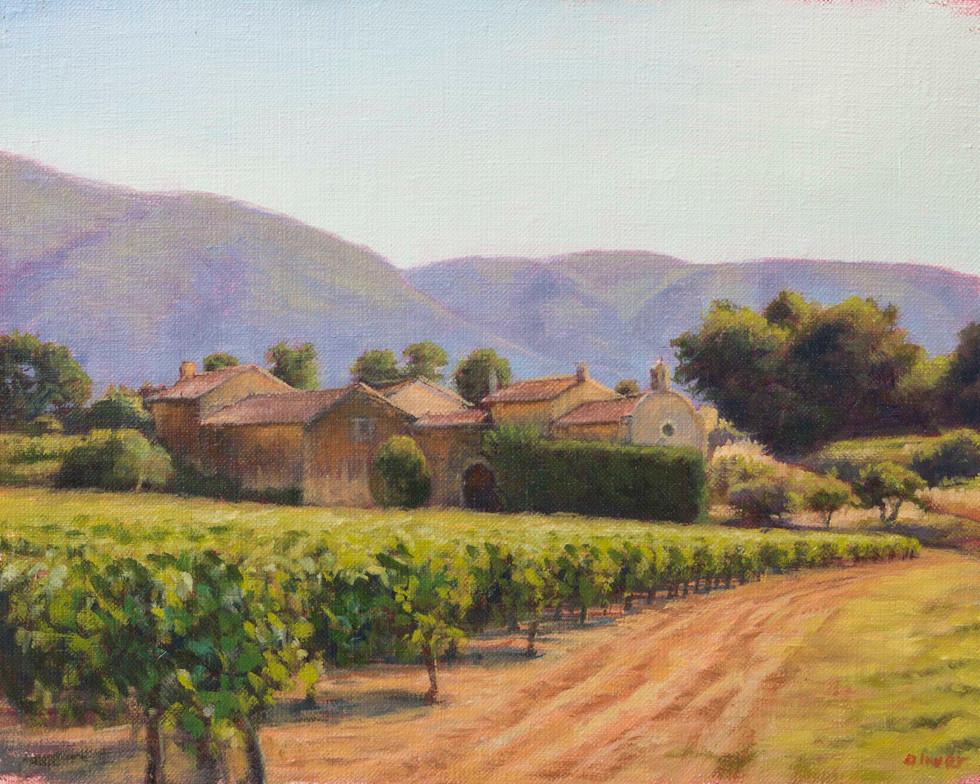 Vineyard near Maubec, Provence
