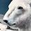 Thumbnail: Nanuk, Banished to Perish