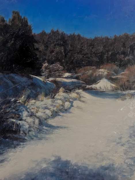 Snow on Pine mountain