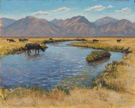 Owens River.jpg