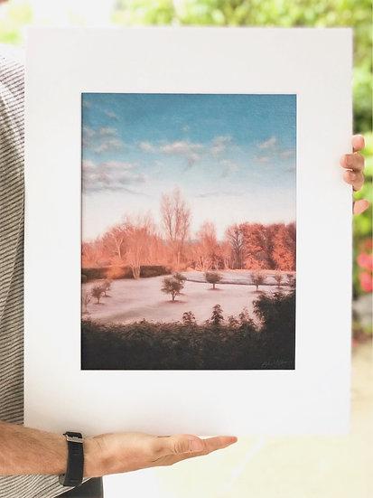 "16 x 20"" Mounted paper print"