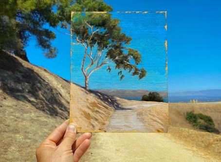 Plein air painting Aug 28th