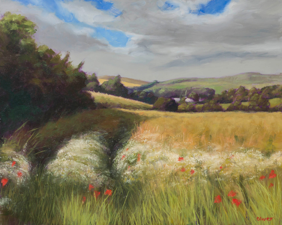 Wissant white flower fields