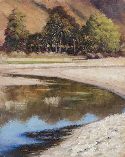 Tree reflections at Malibu Third Point
