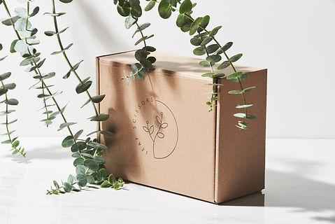 Plastic Free Packaging.jpg