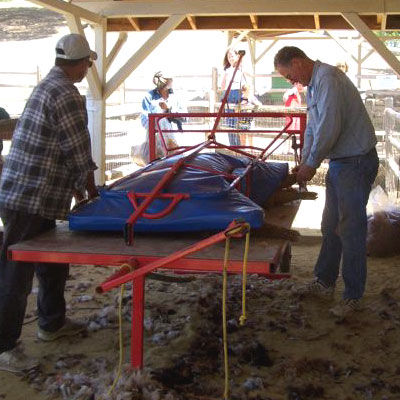 shearing09_table with mat.jpg