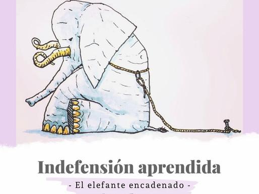 Indefensión aprendida - El elefante encadenado