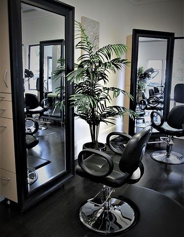 Salon Maddison Mill Valley